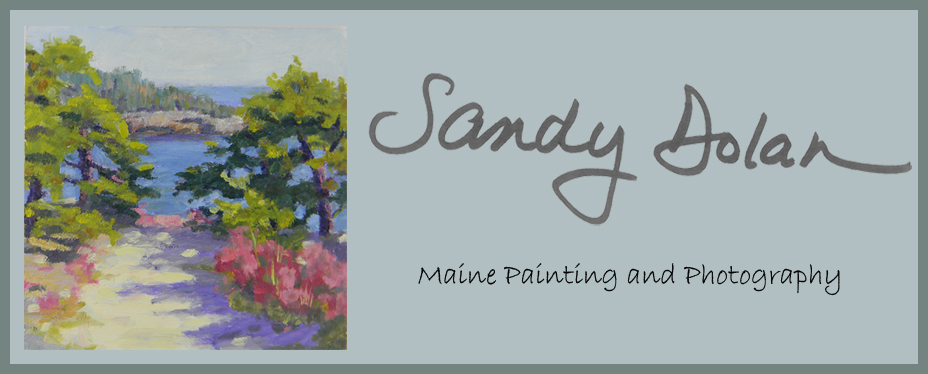 Sandy Dolan Maine Painting and Photography