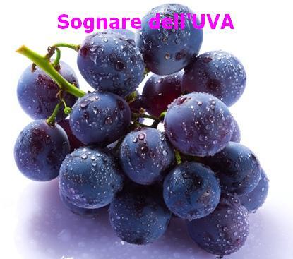 Sognare l 39 uva for Sognare uva fragola