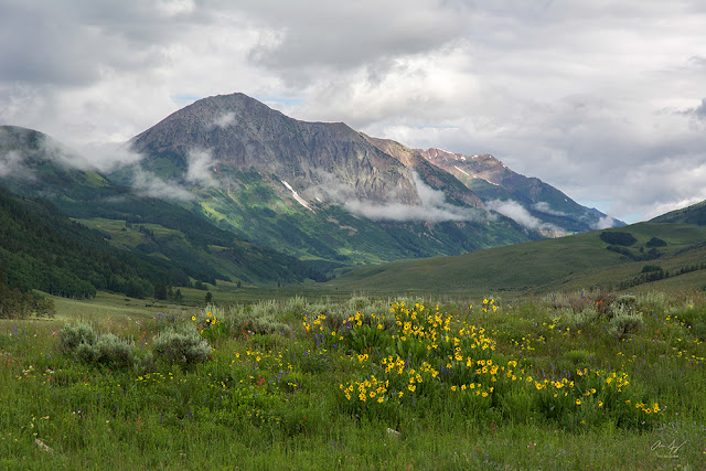 Gothic Mountain in the Elk Range near Crested Butte, Colorado with wildflowers and low hanging clouds
