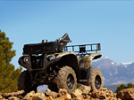 2012 YAMAHA Grizzly 550 FI Auto 4x4 EPS atv pictures 1