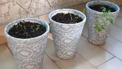 Três vasos pequenos decorados com tecido