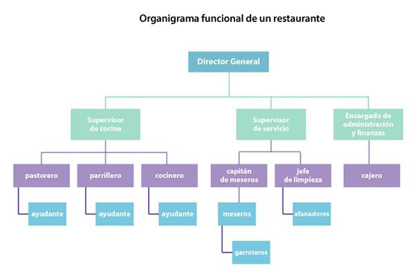 Administraci n de empresas tur sticas online niveles de for Programa arquitectonico de un restaurante pdf