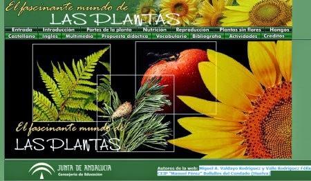 http://www.juntadeandalucia.es/averroes/manuelperez/udidacticas/plantas/castellano/entrada/entrada.htm