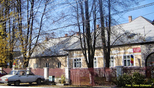 Primăria și Centrul de Plasament