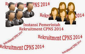 Portal Nasional Pelamar CPNS Online