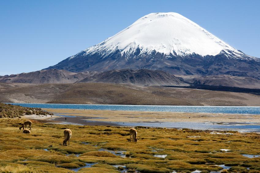 Decoracion Zona Norte De Chile ~   T?pica de la Zona Norte Comidas t?picas de la zona norte de chile