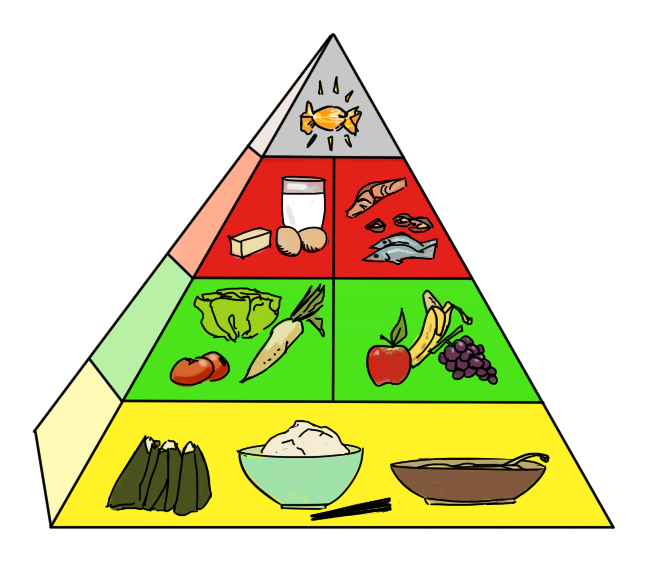 pyramid purpose and guide food