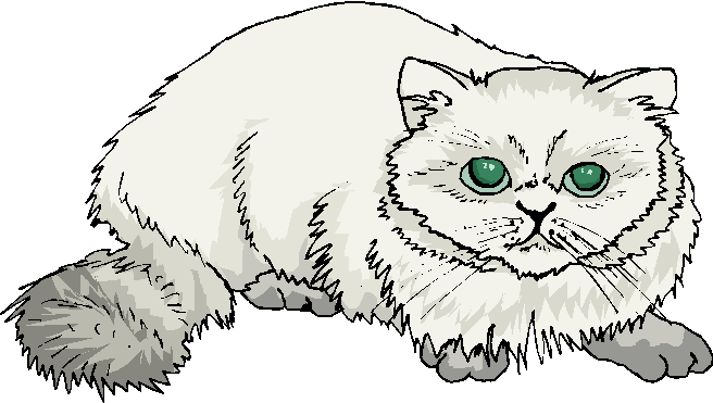 White Fat Cat Free Animal Clipart