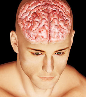 É verdade que só usamos 30% de nossa capacidade cerebral?
