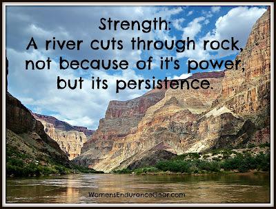 Midweek Motivation: Persistence