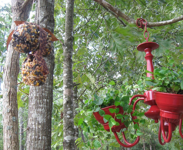 Curb Alert!:  kids diy bird feeders