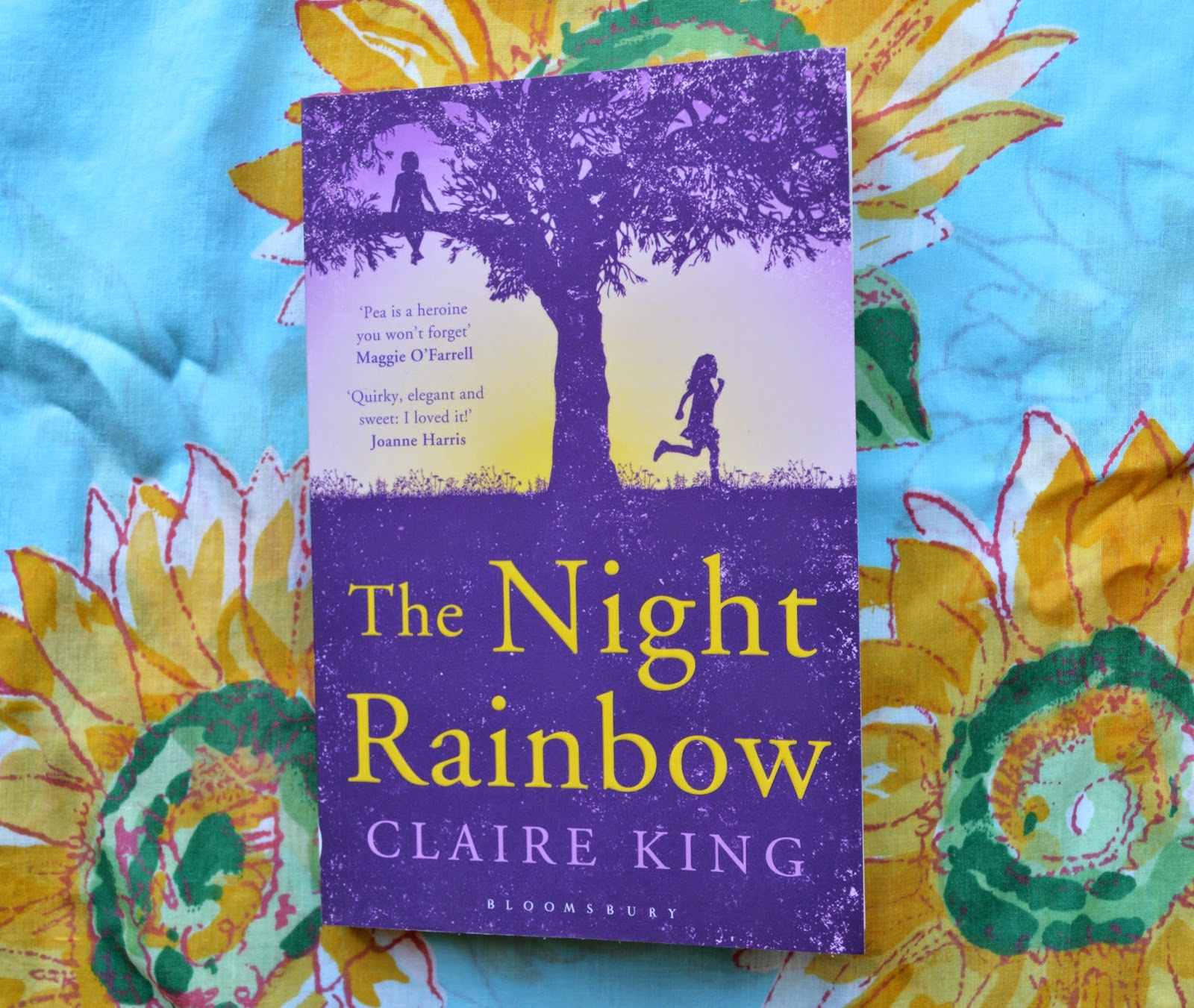 review, The Night Rainbow, fiction, novel, literature, review, book, opinion, plot, paperback, cover, UK edition, Pea, Margot, Claude, childhood, motherhood, South of France