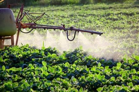 Pericolo pesticidi glifosato nuove leggi mortali