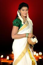 Kerala Saree with Blouse Green