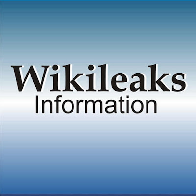 WikiLeaks&#8217;s founder, Julian Assange, filed an application to patent the use of his name