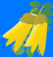 Papakowhai School Website- click on the image