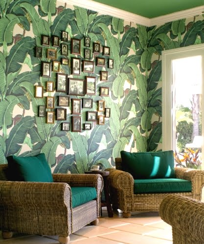 Lush Living With Tropical Room Decor Completely