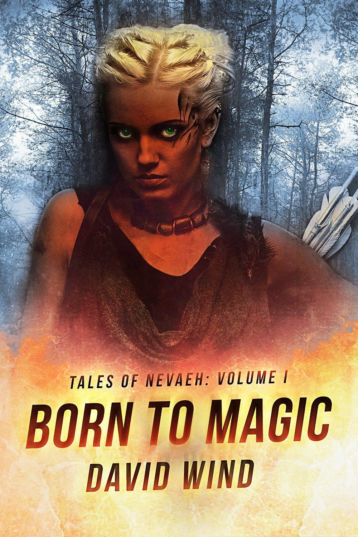 njkinny s world of books stuff nwobs born to magic by david wind