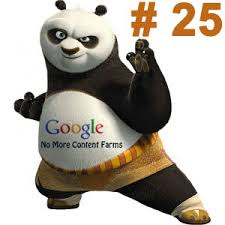 Google Panda Update 25