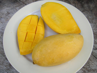 One of the world wide favorite and King of fruits Kesar Keri Mangoes from Talala Town Junagadh District