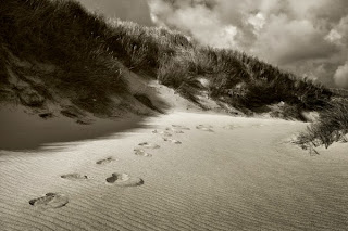 Niels Christian Wulff, fotografía de la naturaleza