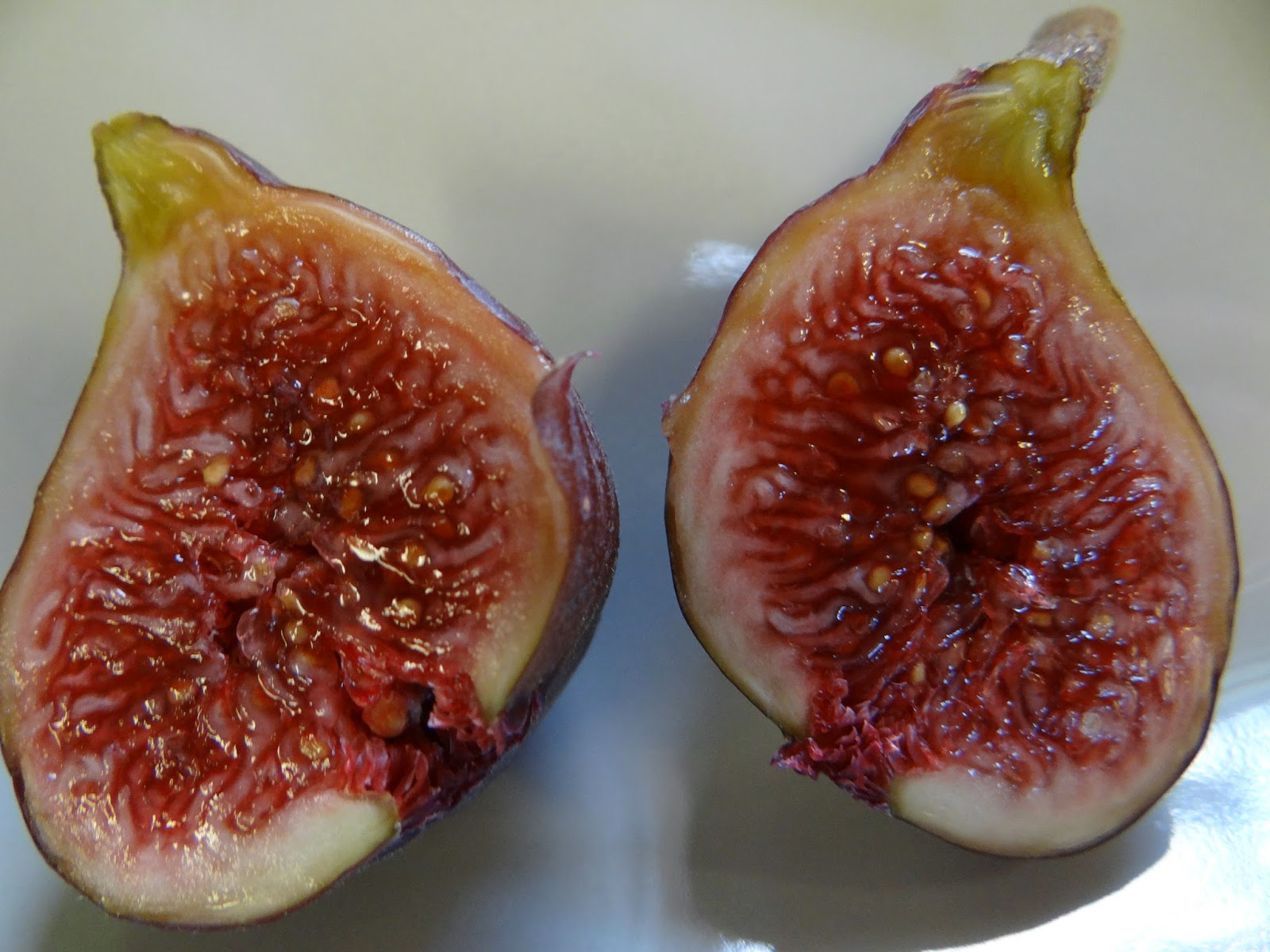 Dried Smyrna Figs - Organic and Sweet | Made in Nature