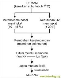 Medical Kejang Demam