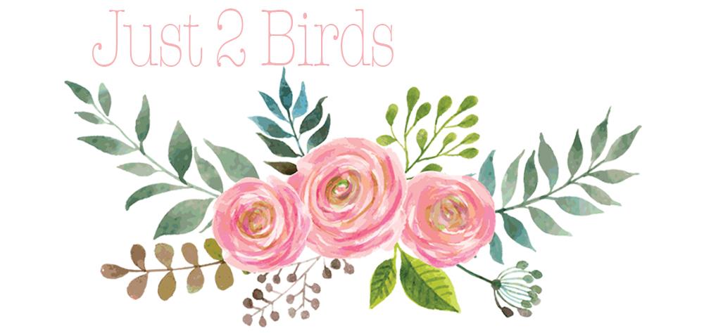 Just 2 Birds
