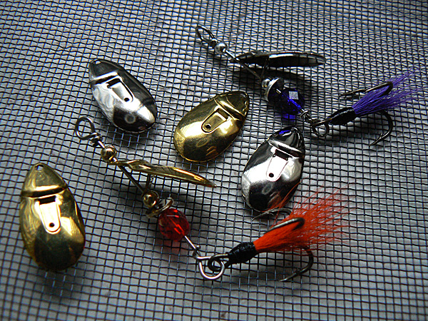 June Bug Drawing Fish Creek Spinners June Bugs