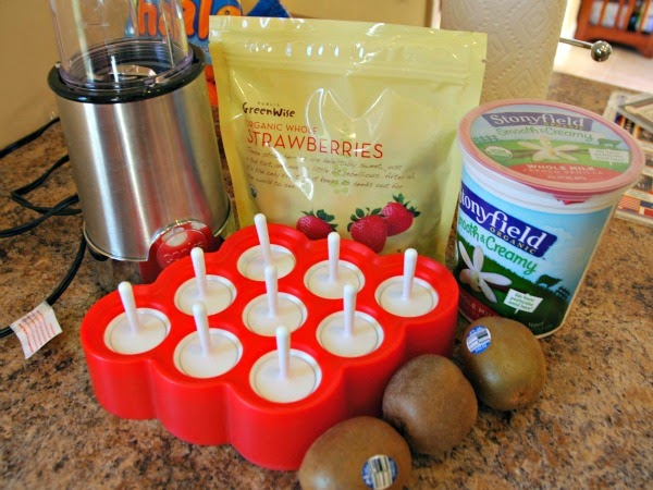 Ingredients for Christmas Popsicles-- Healthy Fruit and Yogurt