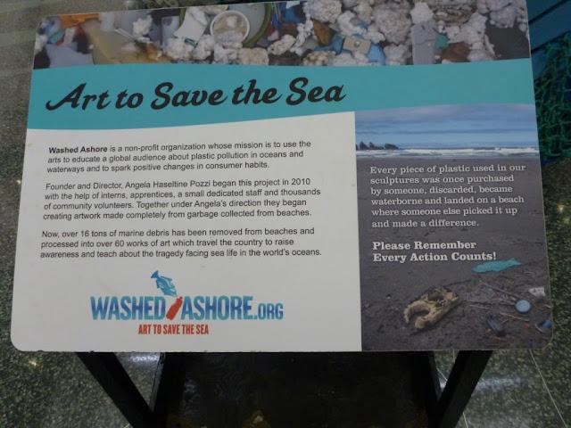 washed ashore plastic