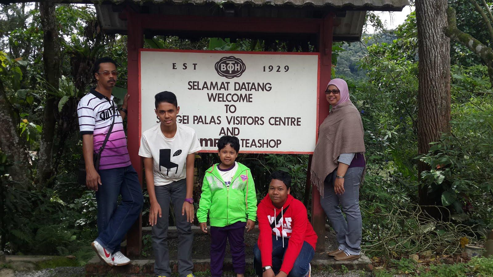 Pahang - Cameron Highlands 2014