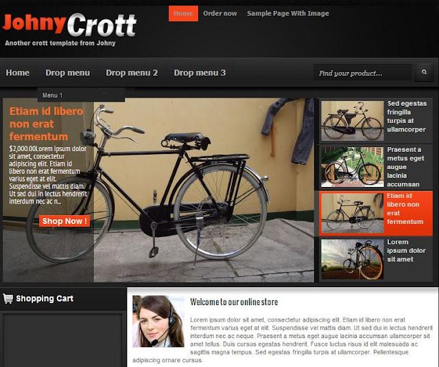 Johny Crrott store template