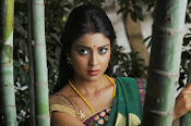 Shriya Saran latest Photos in saree-thumbnail-17