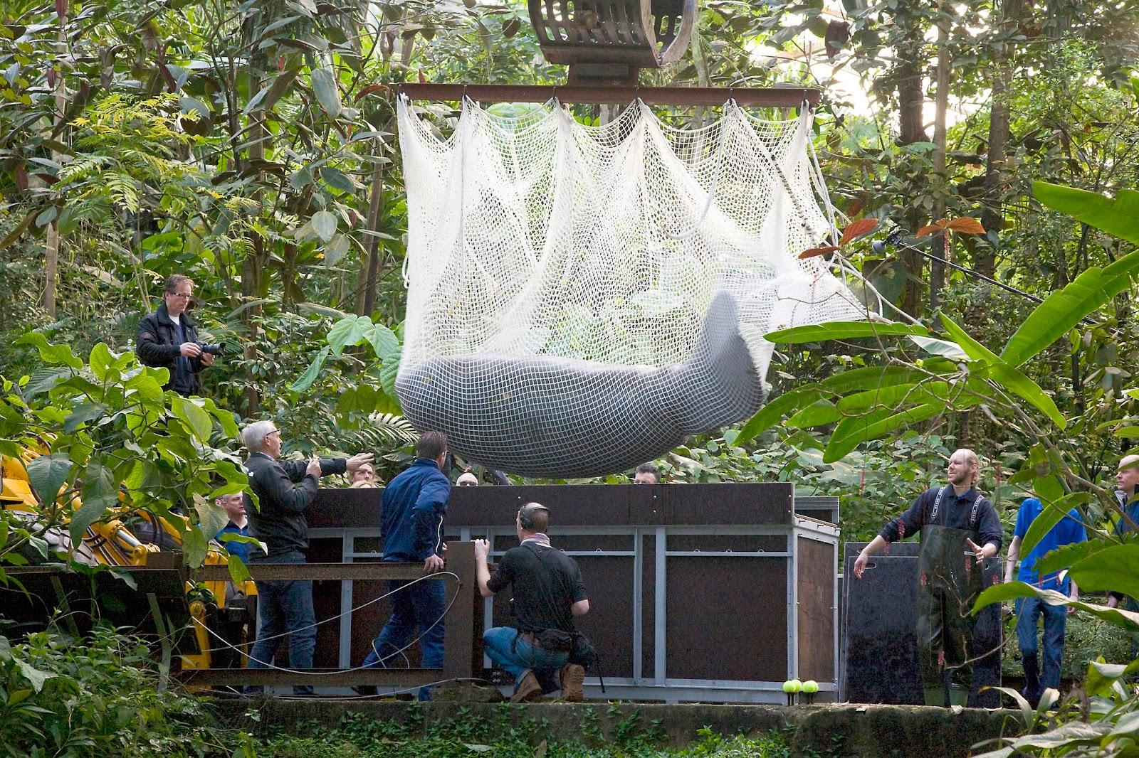 Zoo Logisch Maart 2014