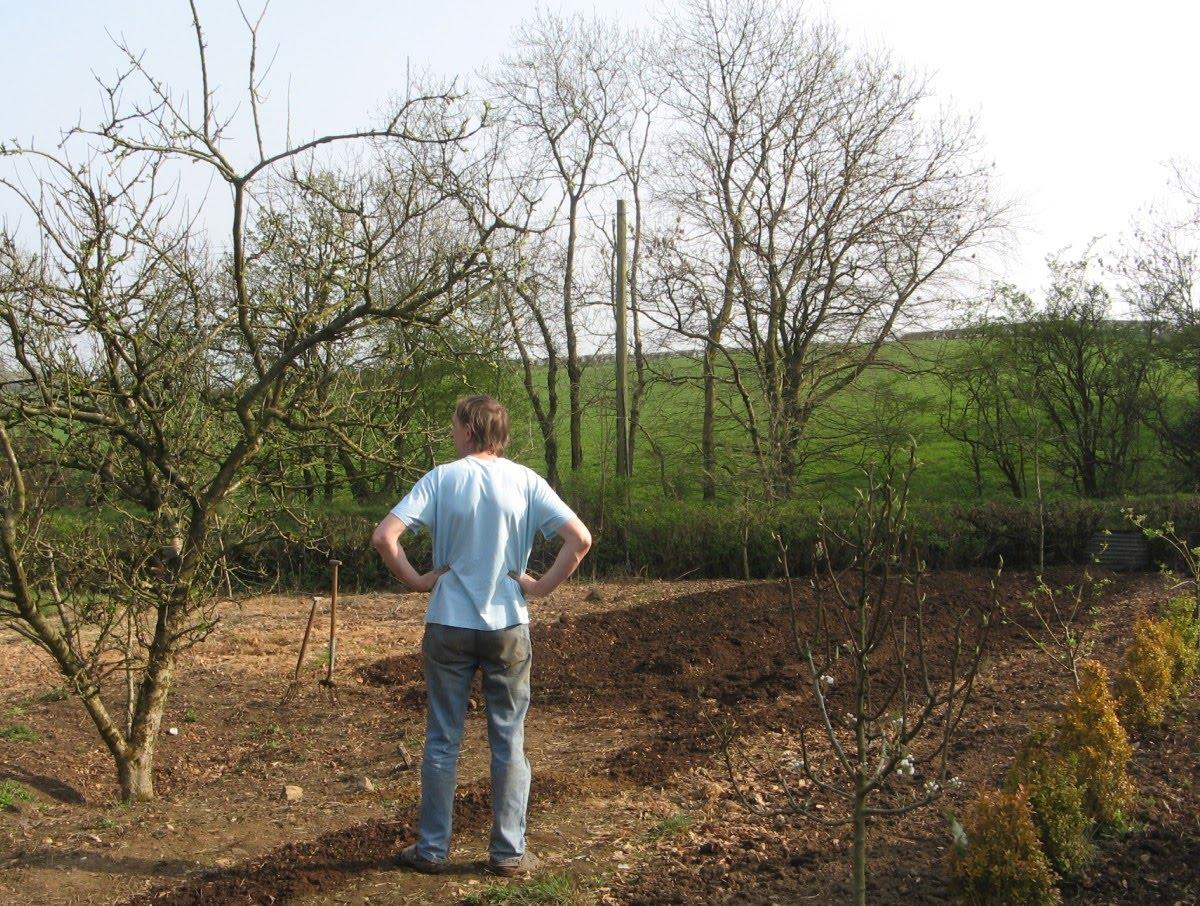 Nelly 39 s garden april 2011 for Gardening jobs for april