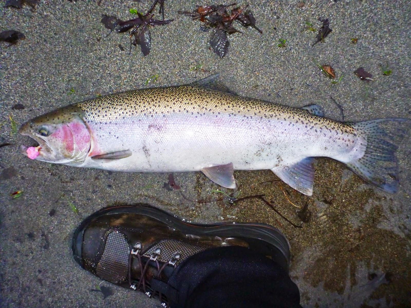 Klamath River Fishing