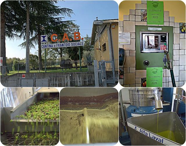 C.A.B.  Terre di Brisighella Cantine e Frantoio Sociale
