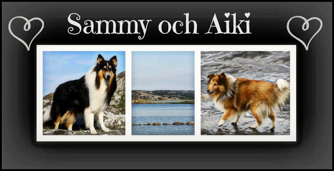 Sammy och Aiki