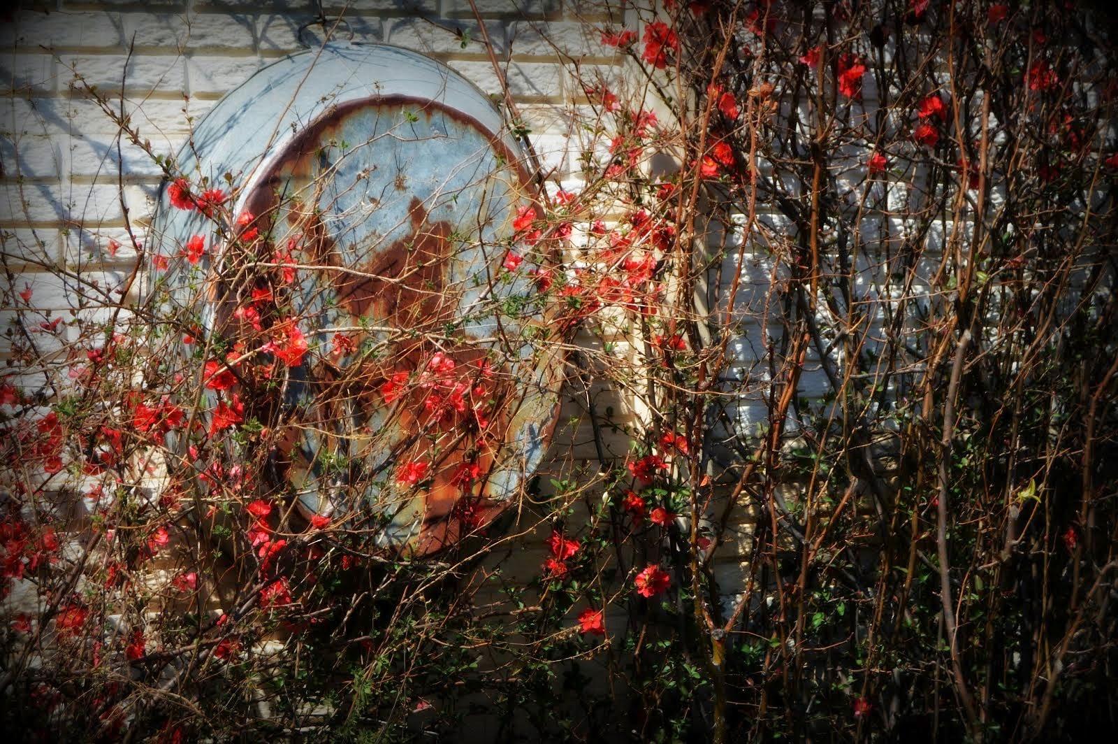 De Oude Huize Yard