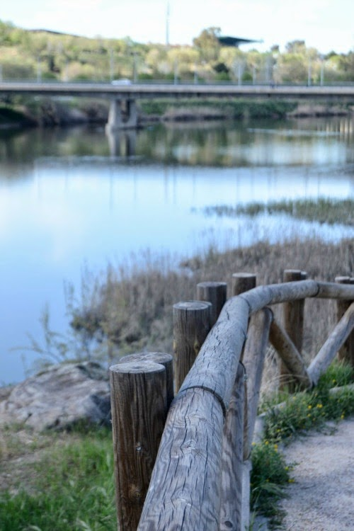 senda ecologica orilla rio tajo
