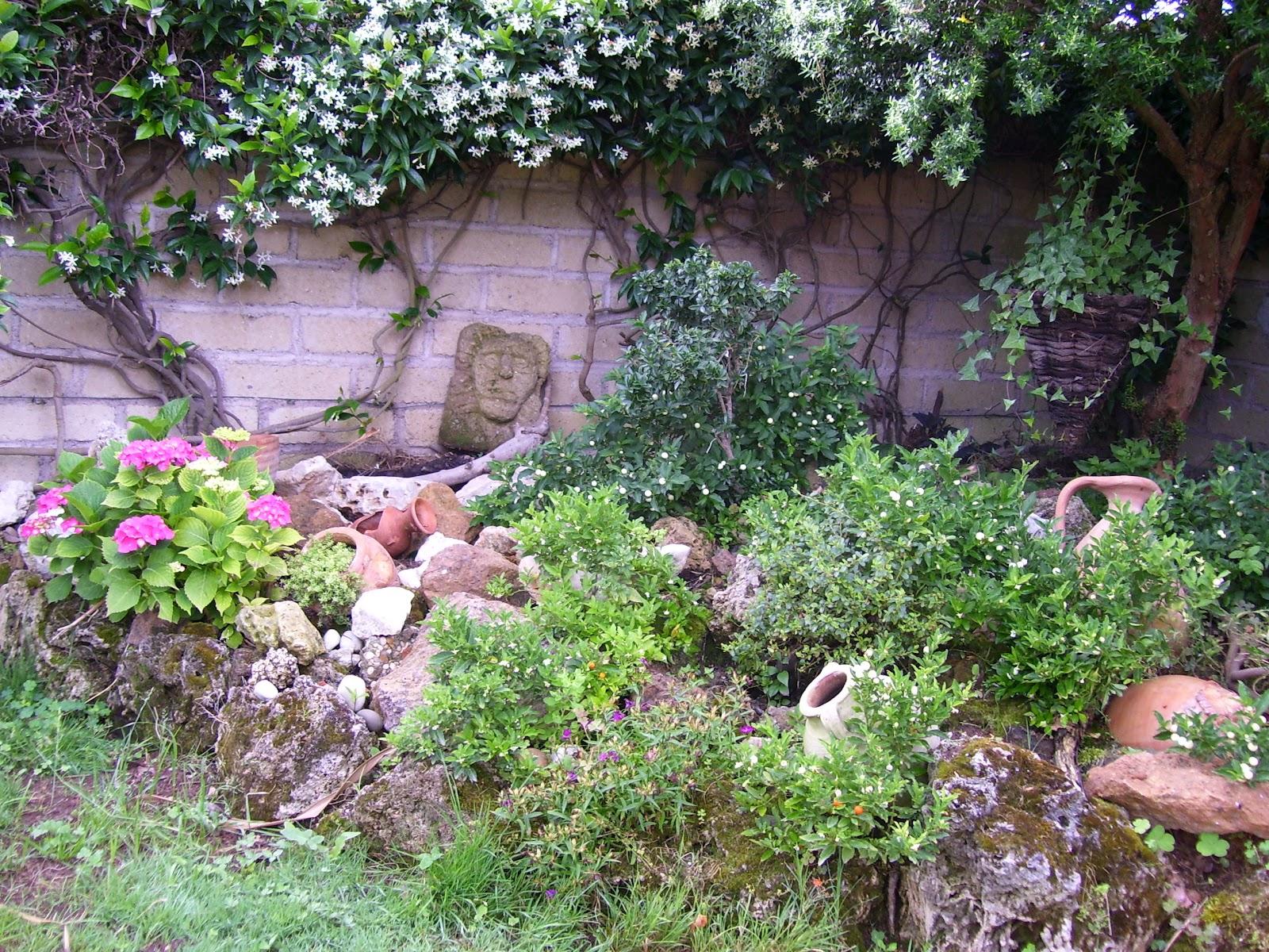 I fiori parlano lo chiamano giardinaggio creativo - Il giardino roccioso ...