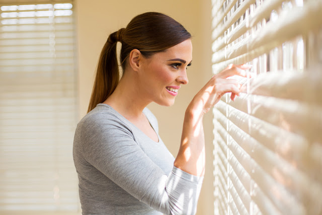 Insulated Blinds