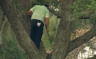 le golfeur espagnol Sergio Garcia frappe une balle depuis un arbre