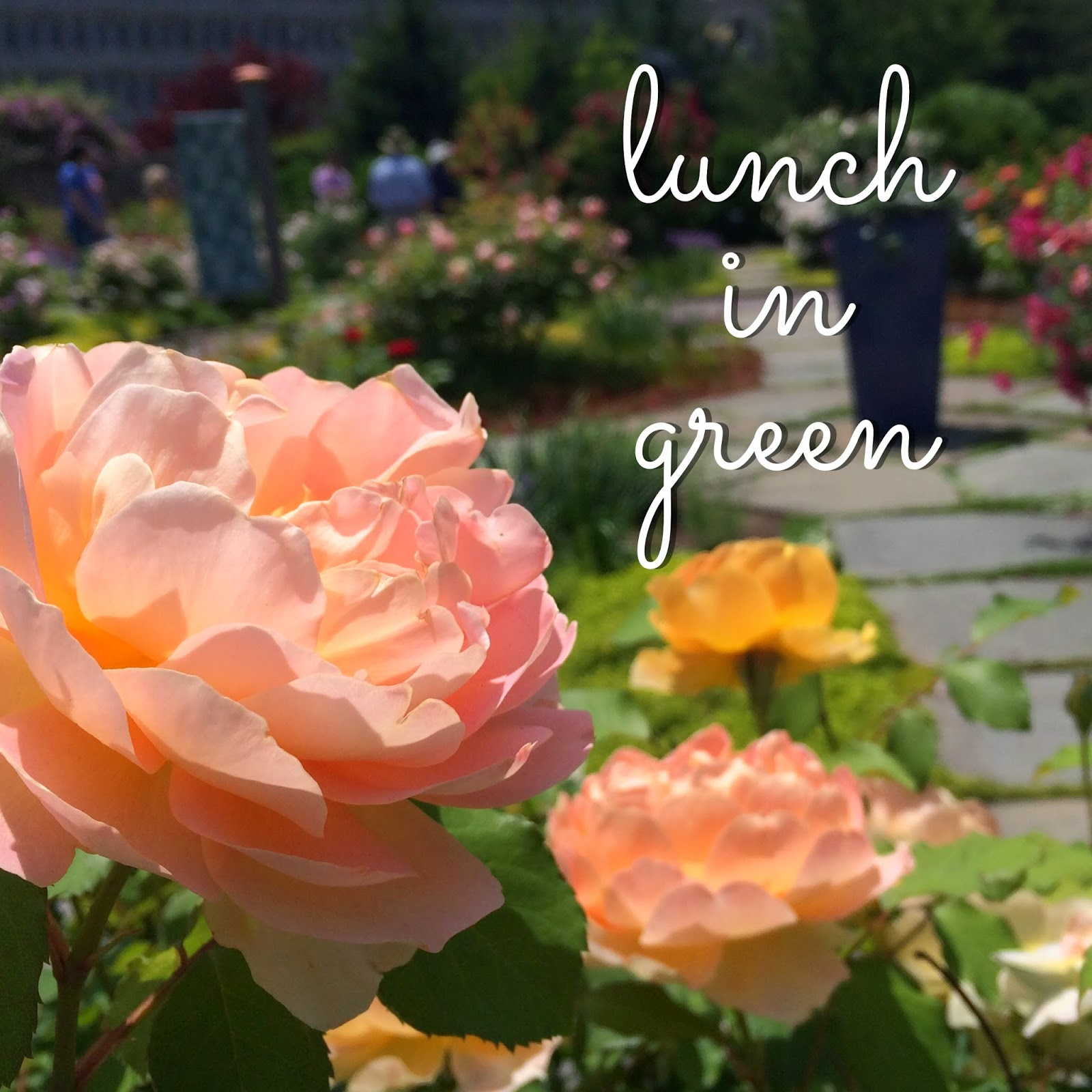 http://melthemidnightbaker.blogspot.com/2014/06/botanic-gardens-take-your-lunch-here.html#more