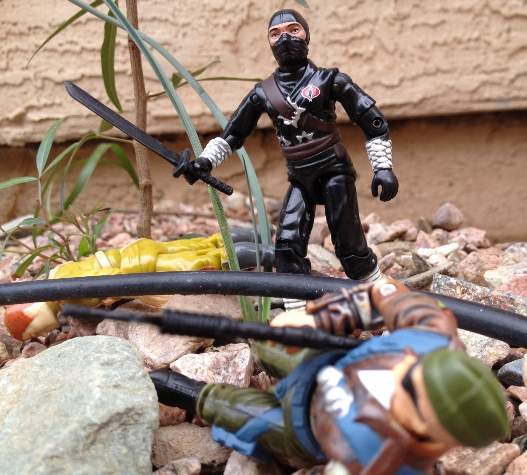 2004 Black Dragon Ninja, Stormshadow, 2005 Snake Eyes, Ninja Ku, TRU Exclusive, 2002 Tomahawk