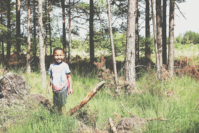 kids-exploring-the-forest-ringwood-summer-story-todaymyway