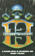 '13' by Steve Wilson