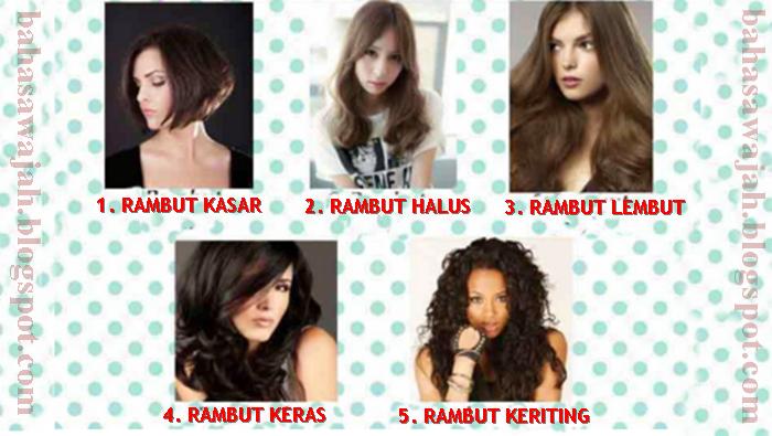 5 Jenis, tipe, karakter, rambut dan kepribadian, watak, sifat, karakter seseorang. Rambut keriting, rambut kasar, rambut lembut, rambut kaku, rambut halus, cara membaca kepribadian dari rambutnya