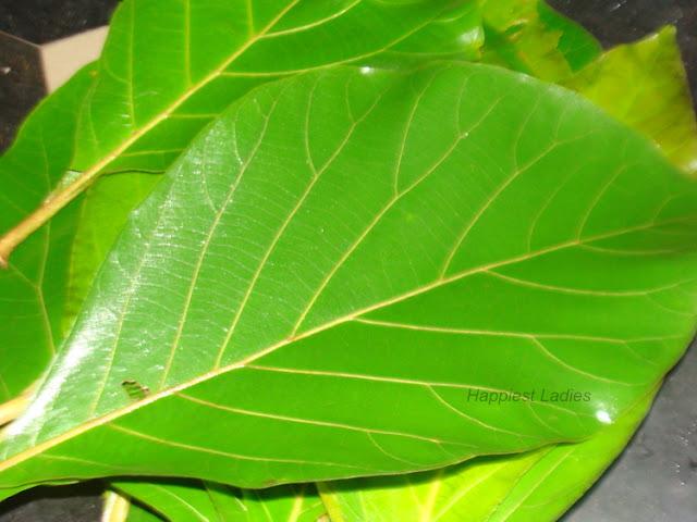Teak leaf for cooking jackfruit idli+jack fruit recipes